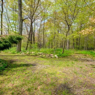 The wooded back yard goes on and on - a great place for kids to explore!